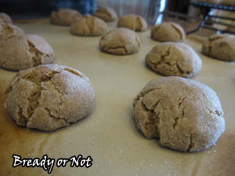 Cardamom Cookies1_sm