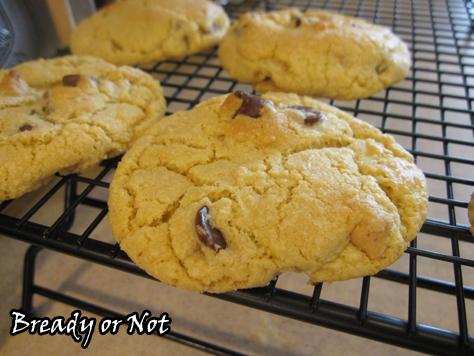 Custard Choc Chip Cookies