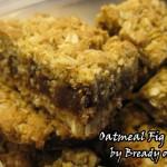 Oatmeal Fig Bars