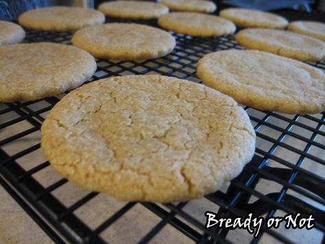Biscoff Shortbread