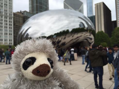 Sloth Bean