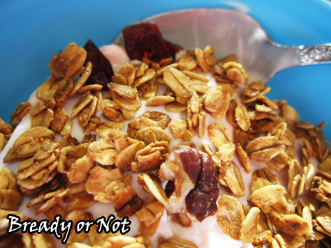 Bready or Not: Maple Cranberry Pecan Granola