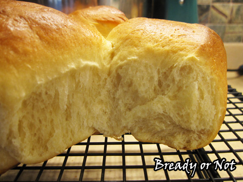 Bready or Not: Japanese Milk Bread Rolls
