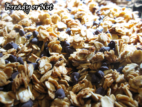 Bready or Not: Peanut Butter Chocolate Chip Granola