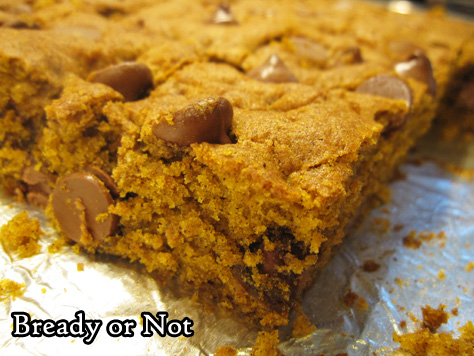 Bready or Not: Pumpkin Chocolate Chip Bars