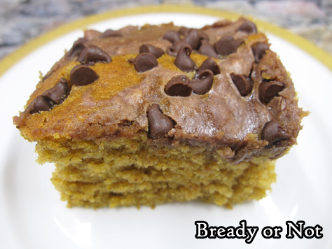 Bready or Not: Chocolate-Swirled Pumpkin Bars