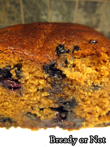Bready or Not Original: Blueberry-Gingerbread Loaf