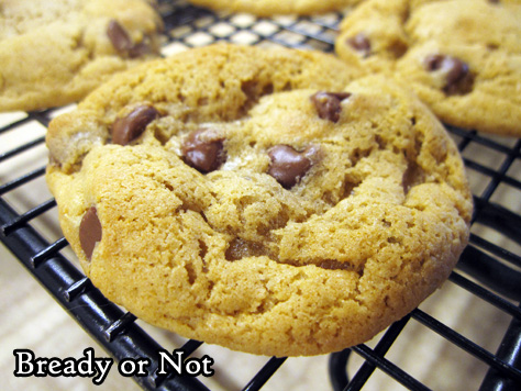 Bready or Not Original: Chewy Cookie Butter Chocolate Chip Cookies